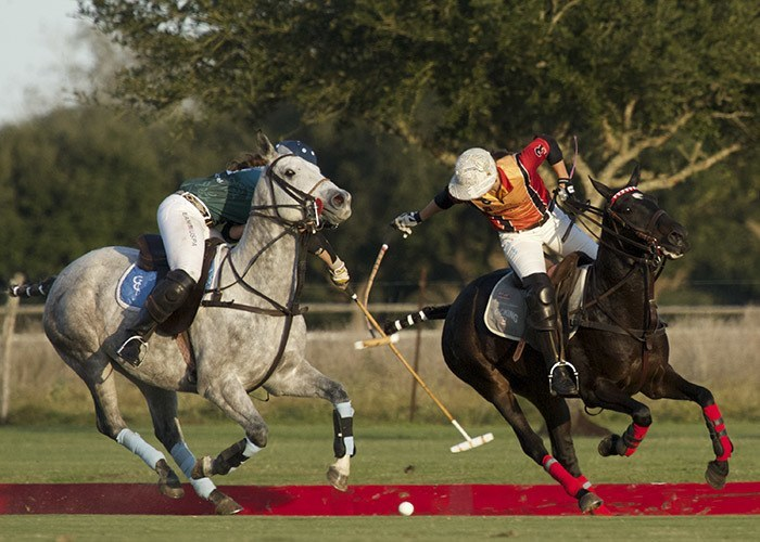 polo championship fight