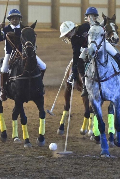 polo lessons for children