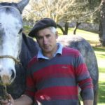 polo horse trainer