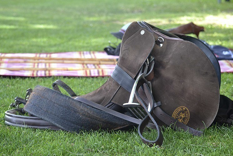 Club de Campo Villa de Madrid_polo saddle