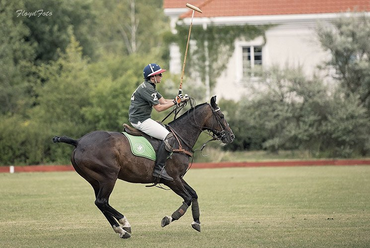 polo school uk